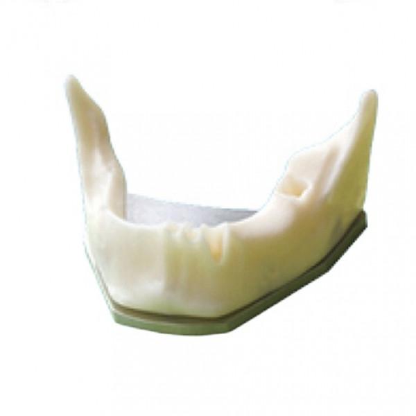 Модель нижней челюсти для постановки имплантов SD-Z8, ProDent