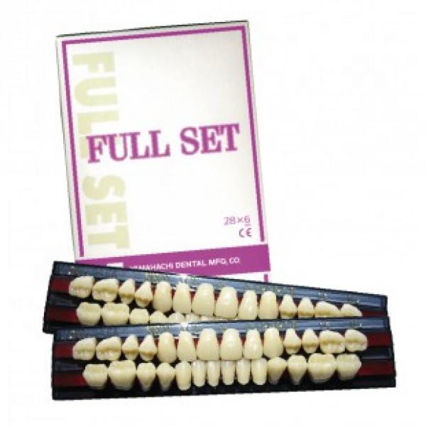 Набор зубов NEW ACE фронтальные и NAPERSE жевательные 28/1, Yamahachi